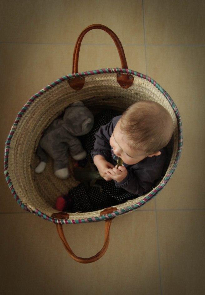 amaya sailing her basket catching allegators-6
