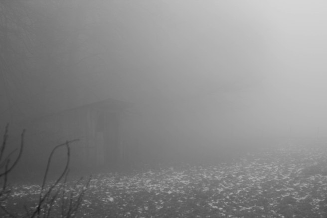 fogbw-1