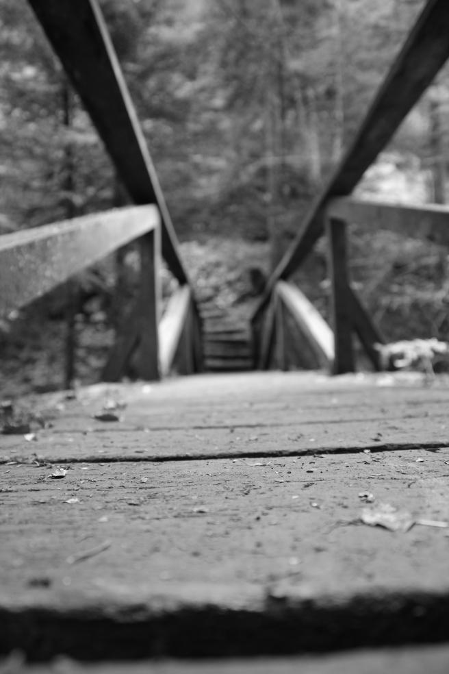 The gorges of Poëta-Raisse wooden bridge (1 of 1)